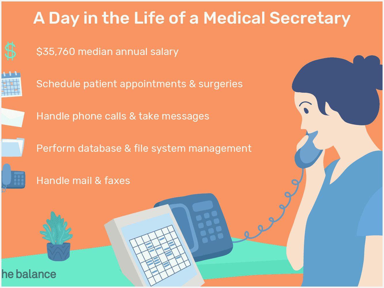 43 Best Of Medical Office Administration Job Description