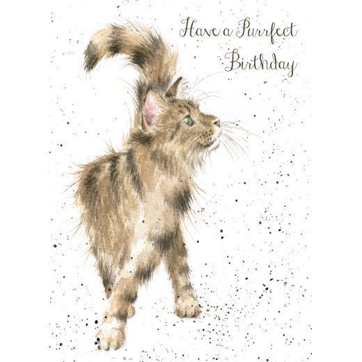'Just Purrfect' Birthday card