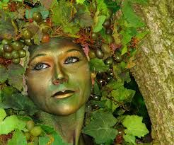 Tree girl wonderland events makeup and halloween costumes easy last minute halloween costume ideas photo 20 solutioingenieria Choice Image