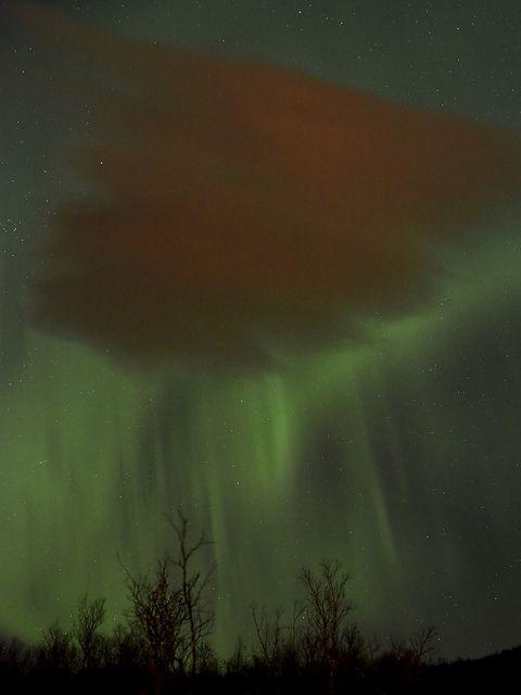 Aurora Rainshower - Nordlys, Tromso, Norway