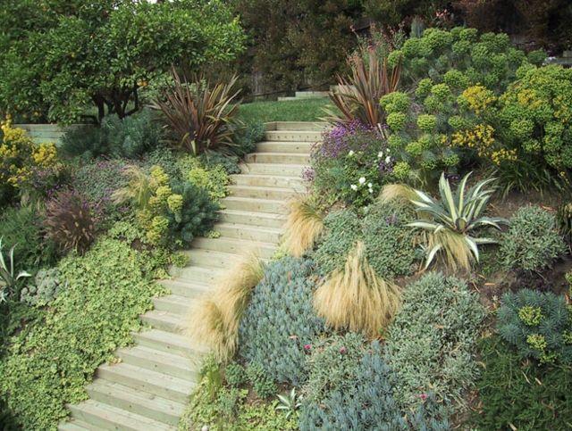 Sukkulenten Im Garten Tropische Pflanzen Bringen Einen Hauch Exotik Exotische Pflanzen Garten Pflanzen Stauden
