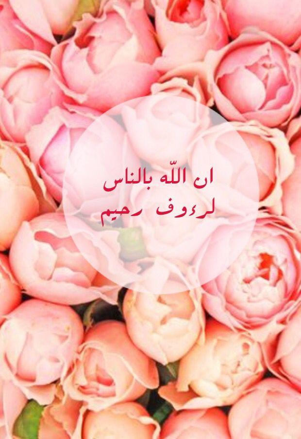 اسم الله الرؤوف Rose Flowers Shabbat Shalom