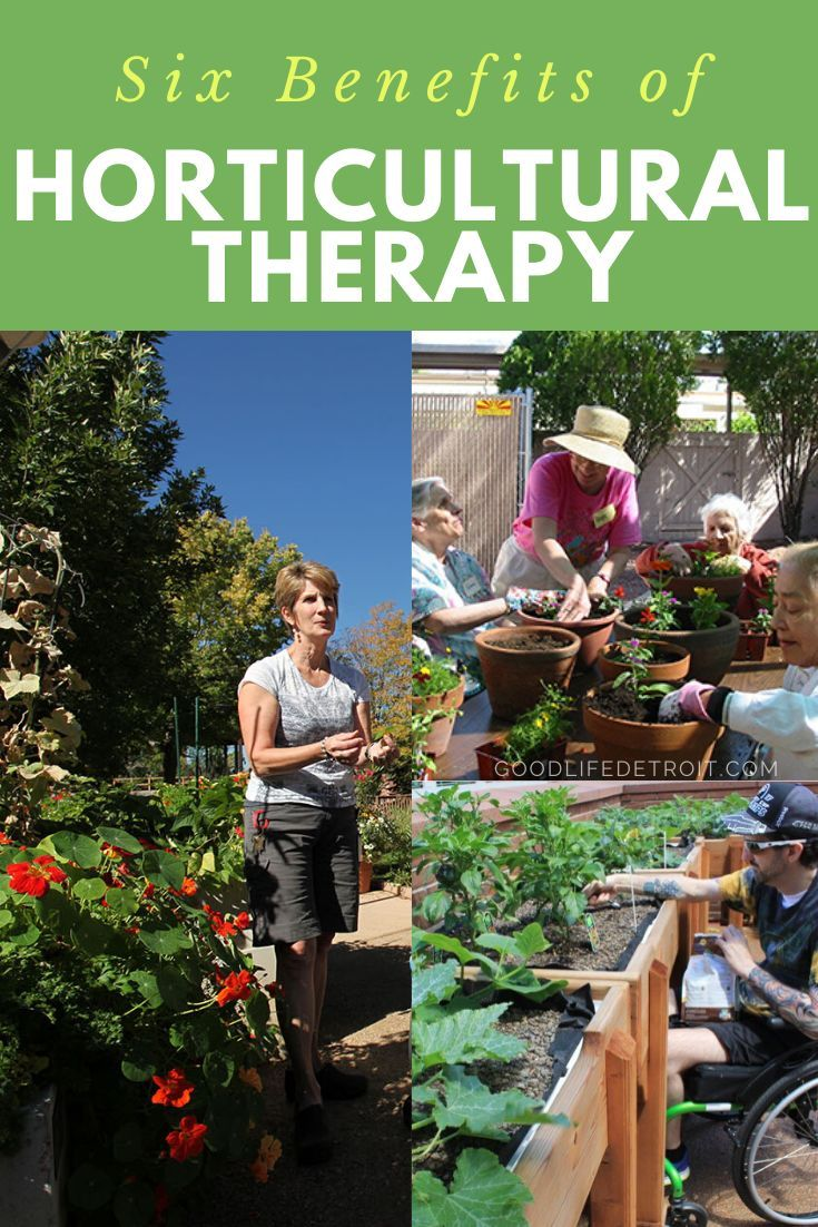 Horticultural therapy offers healing and rehabilitation