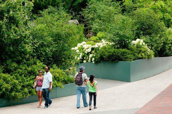 National Aquarium In Baltimore Baltimore Usa Rhodeside Harwell World Landscape Architecture Landscape Architecture Landscape Design National