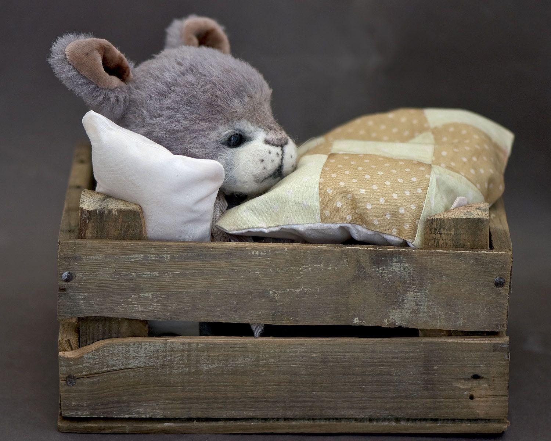 Three O'Clock Bears: Little PeeWee...a Sweet Bunny in a Box