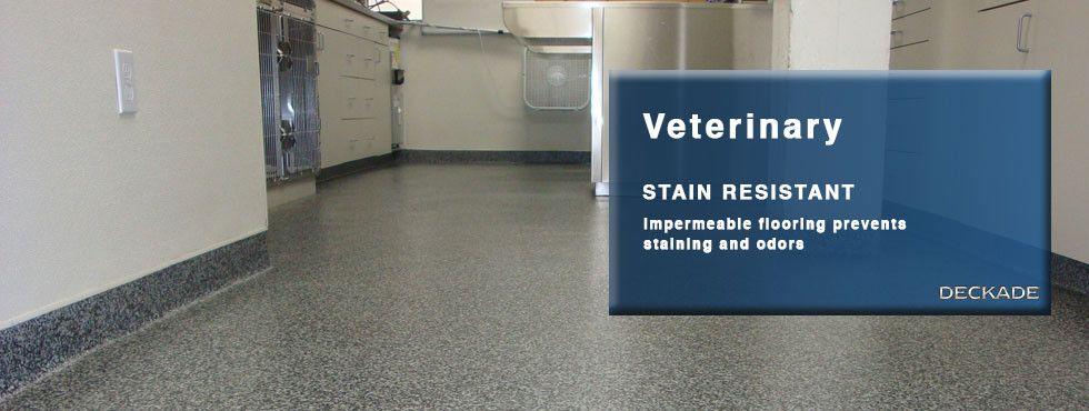 FLOORING FOR VET CLINICS Flooring, Flooring projects