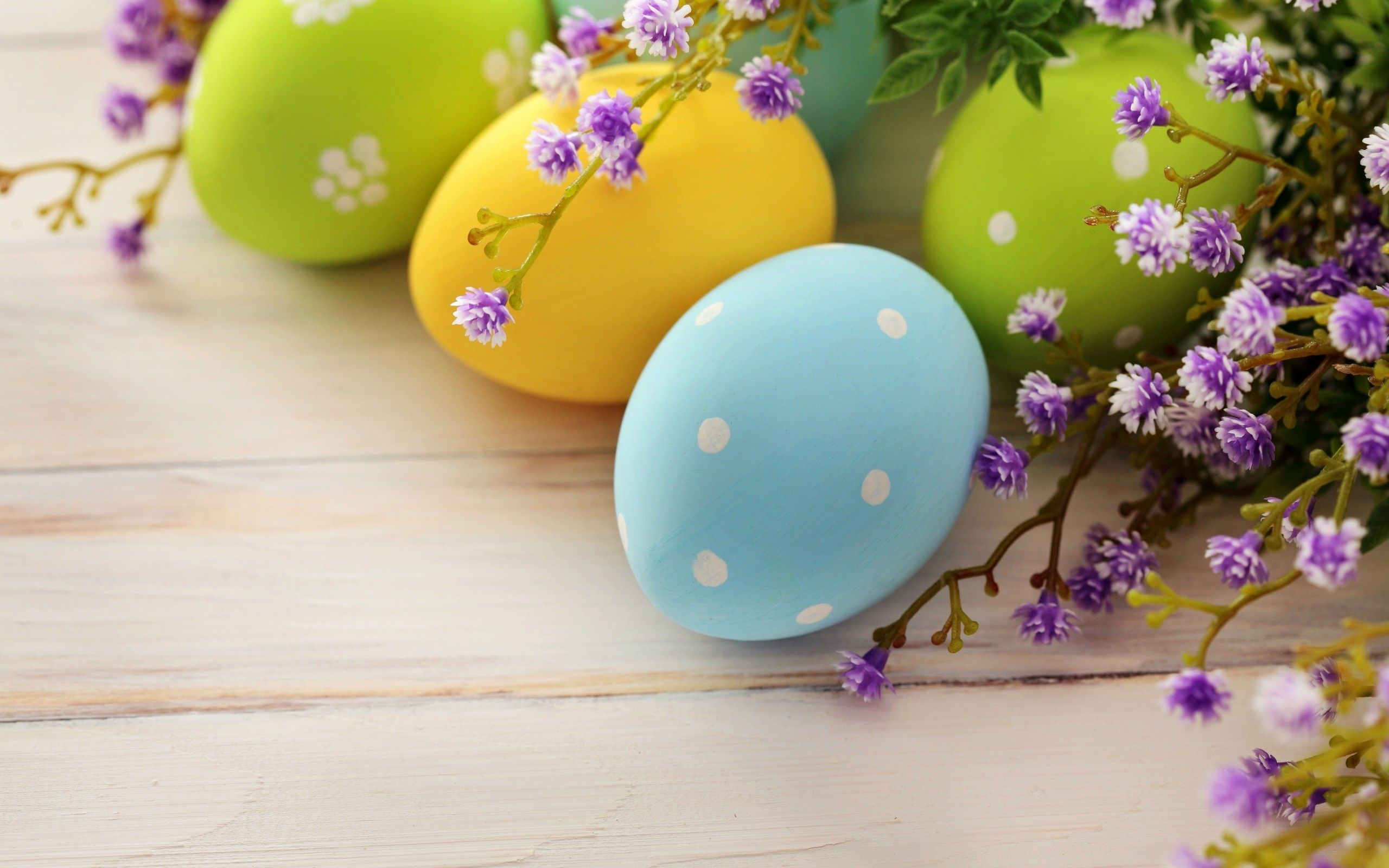 Colorful Easter Eggs White Dots Flowers HD Wallpaper