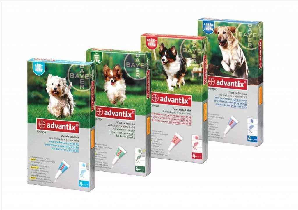 Advantix 400 2000 Dog 25 40 Kg 6 Pipettes Sixpack Click Image To Review More Details This Is An Amazon Affilia Dog Training Pads Dog Itching Dog Diapers