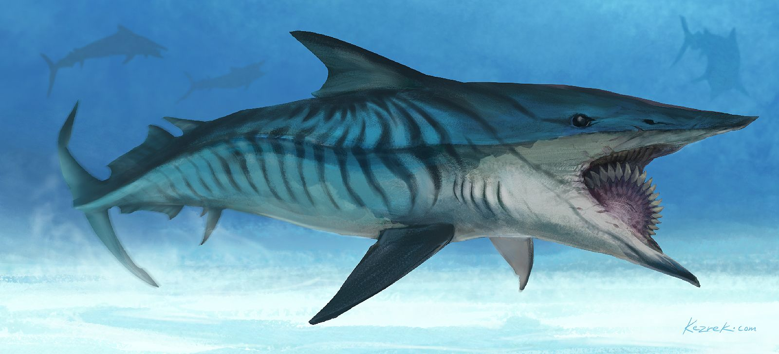 Helicoprion by paleoarte for How to shark fish