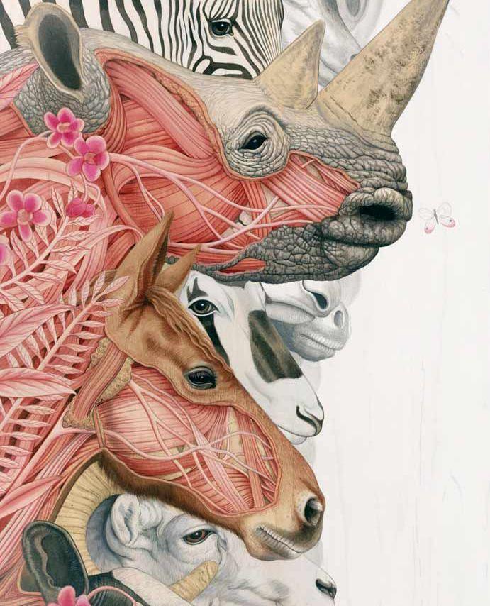 Detail - Divide, by Tiffany Bozic