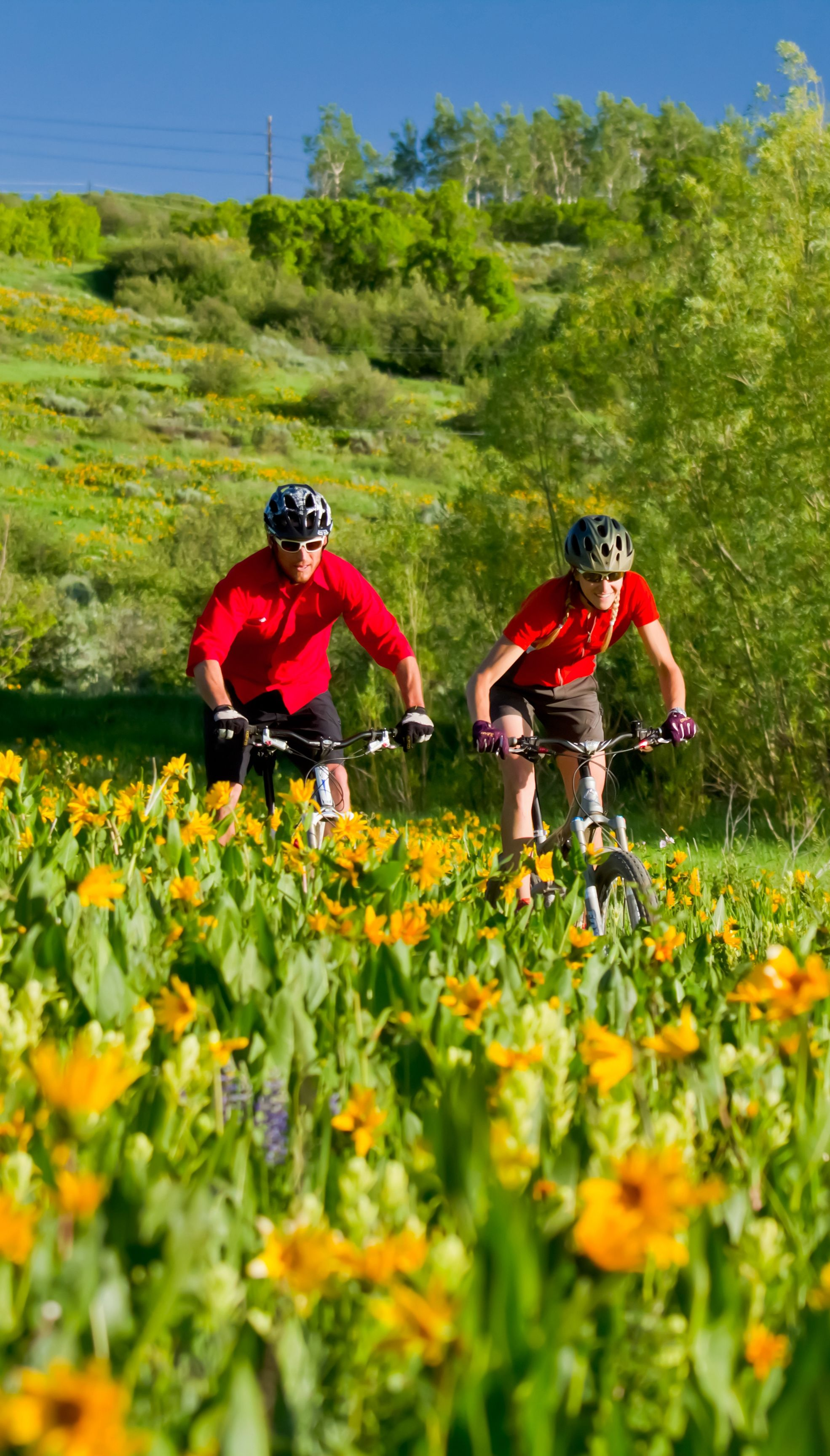 In the warmer weather, the mountains are home to extensive bike trails.