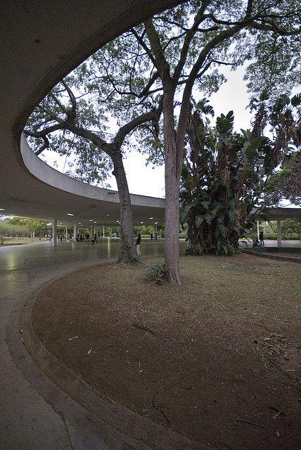 33894b124fcb Ibirapuera park