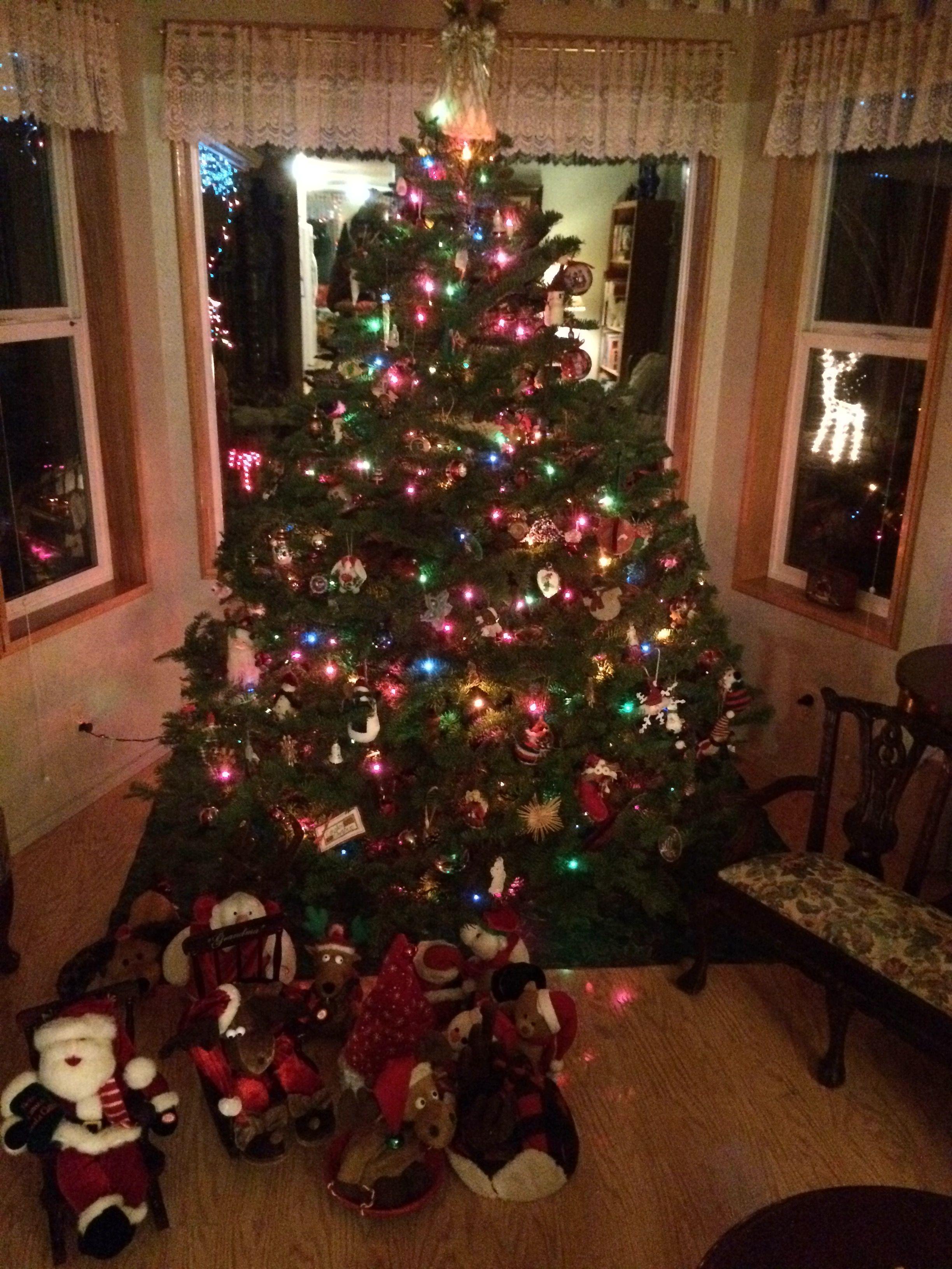 Weihnachtsdeko Amerikanisch lebt seit 10 moanten in cottage grove oregon der baum wurde