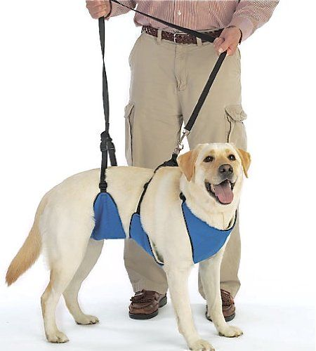 Amazon.com: Support Rx Total Body Harness System (XX-Large): Pet Supplies