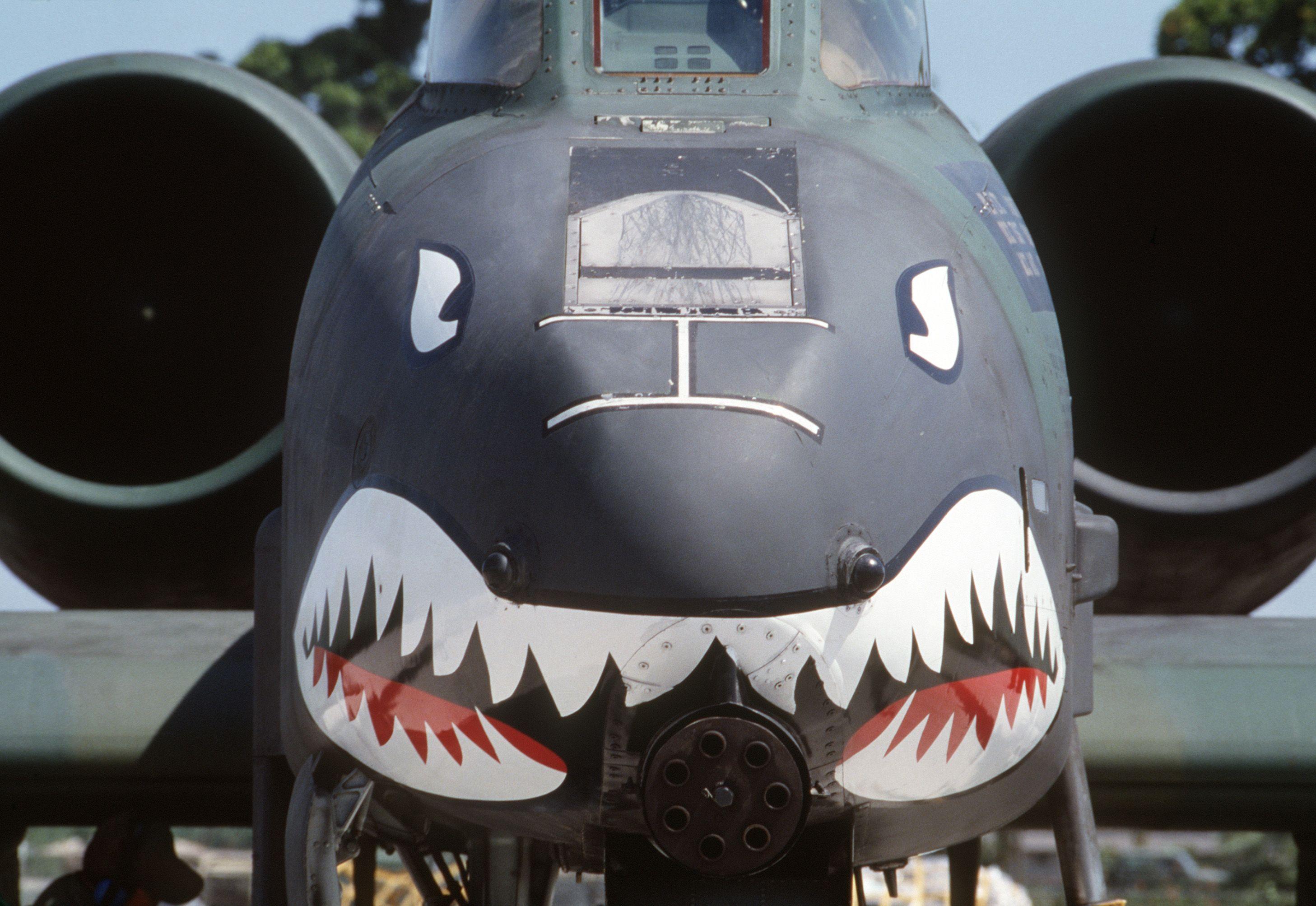 I love the Warthog attack plane.