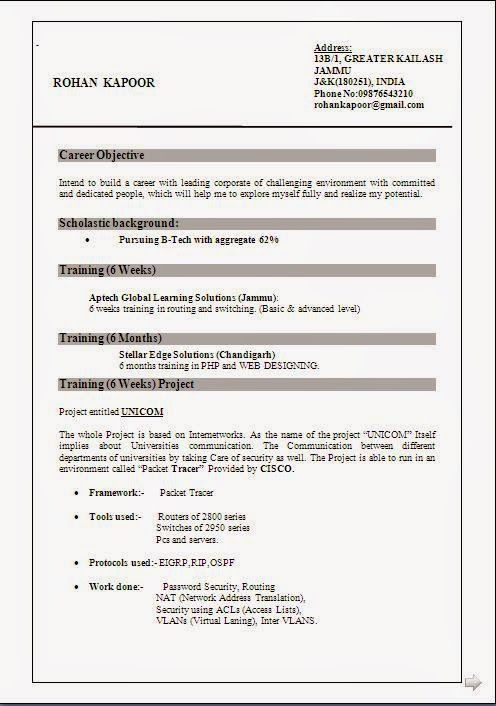 Experience Resume Format Doc Sample Template Excellent Curriculum