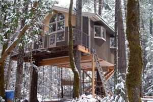 Peacemaker Treehouses