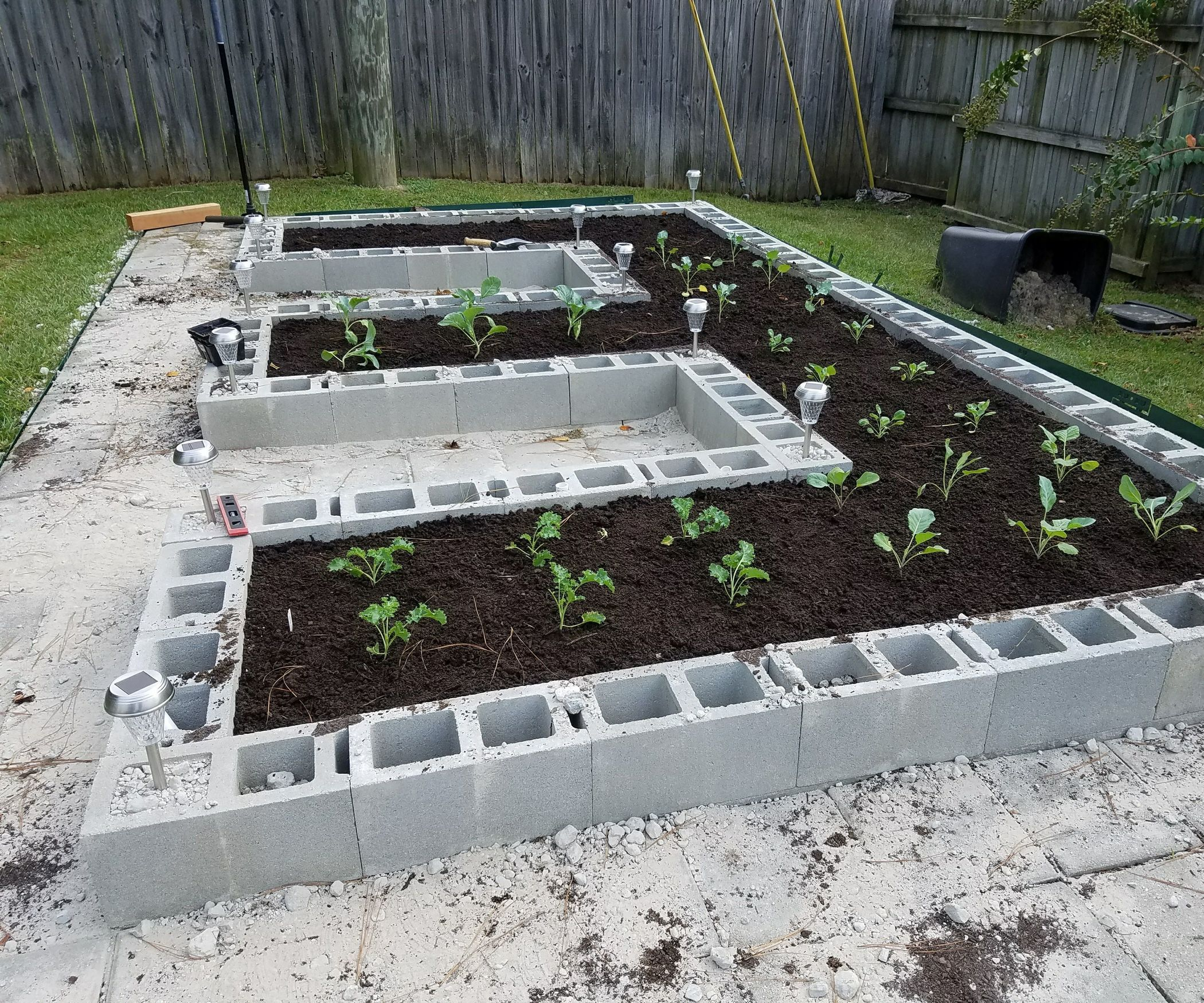 Build A Concrete Block Garden For Food And Memories Vegetable