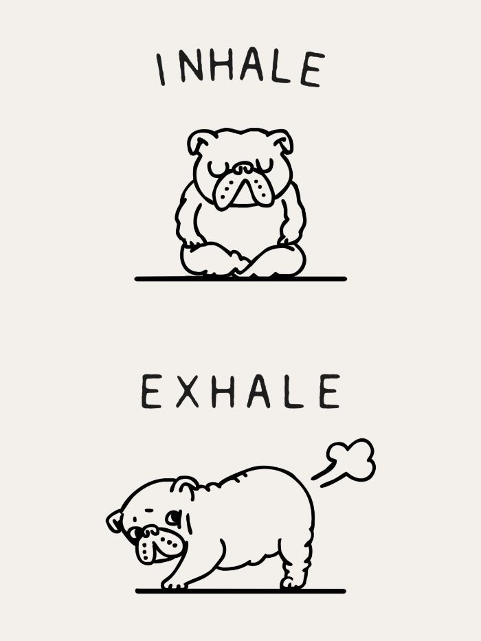 Inhale Exhale English Bulldog Art Print | Funny pictures | Pinterest ...