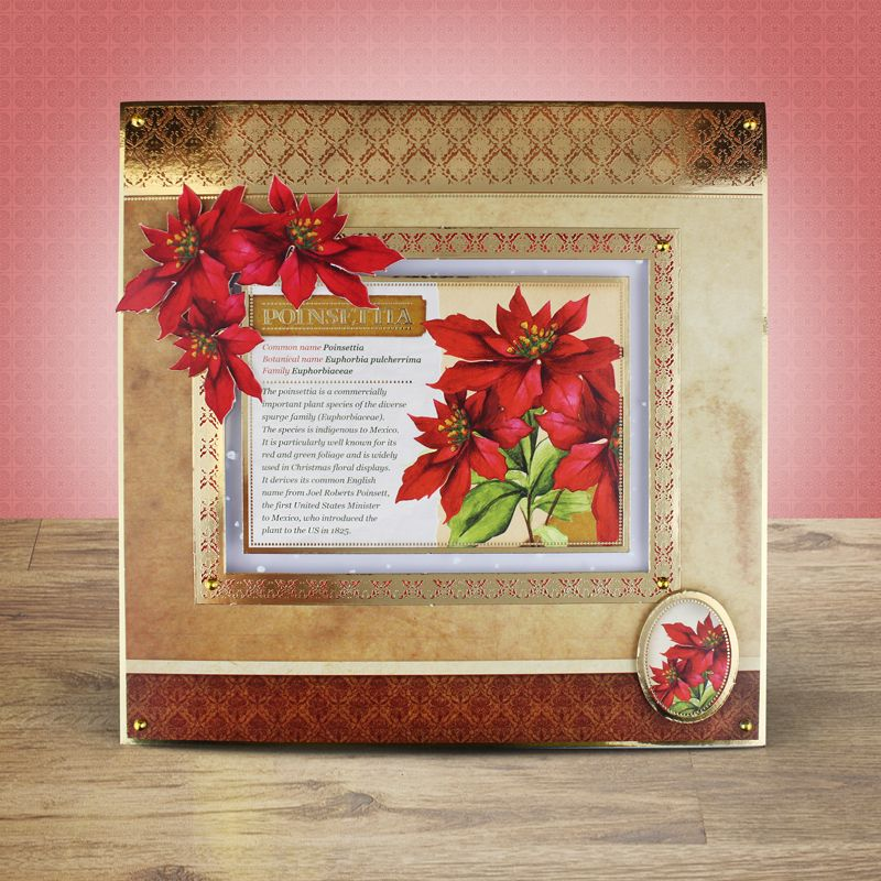 Birth Flowers Hunkydory Hunkydory Crafts (With images