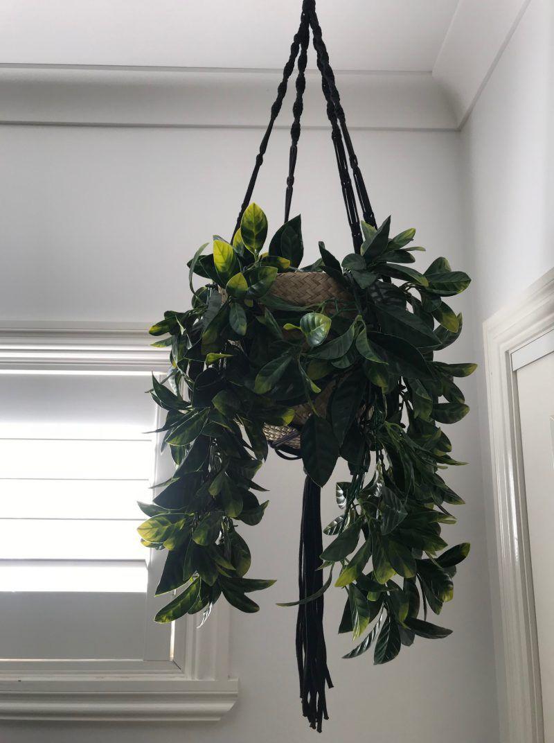 Diy Fake Plant Hanging Pot Hanging Plants Hanging Plants Diy