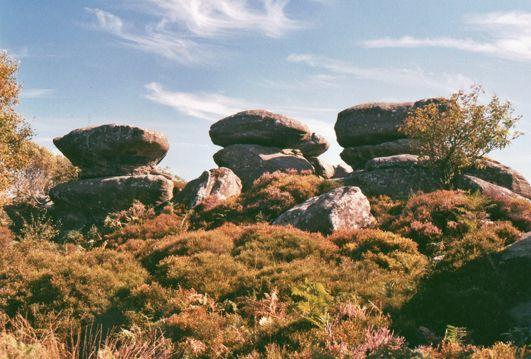 Brimham Rocks, near Reipon