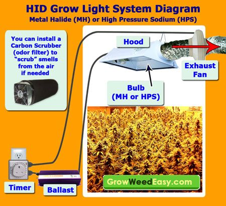 This HID Grow Light System Diagram explains all the