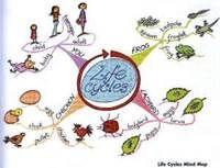 Mind Maps For Kids Elklan Pinterest