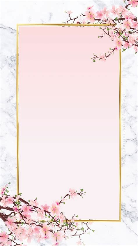 Decorative Frame PNG | Page Borders Design, Flower Drawing