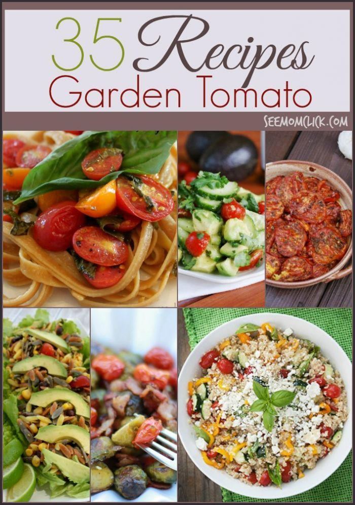 The best thing about gardening? All that free produce in your backyard! We are drowning in tomatoes by late summer so I am loving all of these delicious tomato recipes. Easy dinner recipes, appetizers, salads and more.