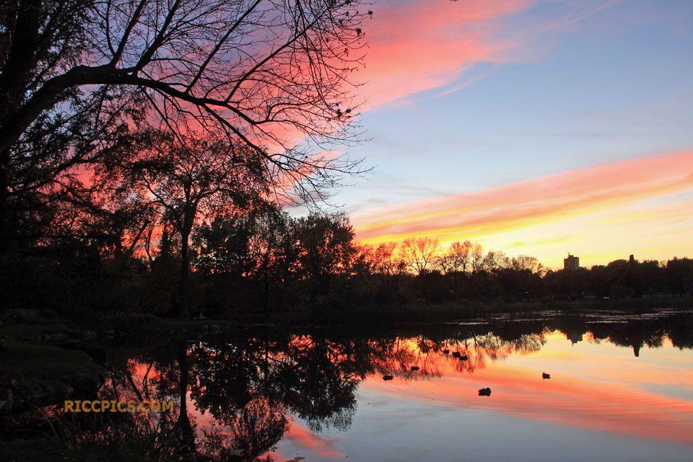 Sunset Over the Pond (Montreal Botanical Garden