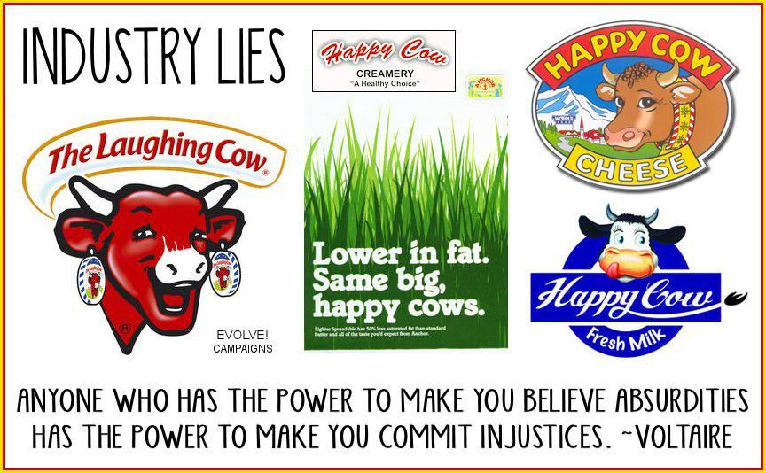 "happy, laughing cows how absurd - ""anyone who has the power to make you believe absurdities has the power to make you commit injustices"" ~ Voltaire; please ditch dairy, go #vegan"