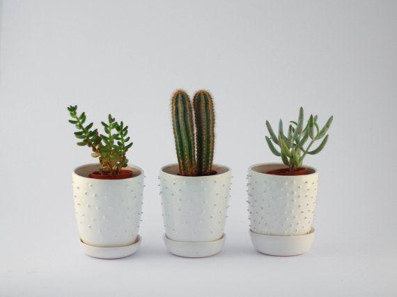 Lovely spiky handmade ceramic planter with saucer by OlisCupboard - Lovely Spiky Handmade Ceramic Planter With Saucer By OlisCupboard