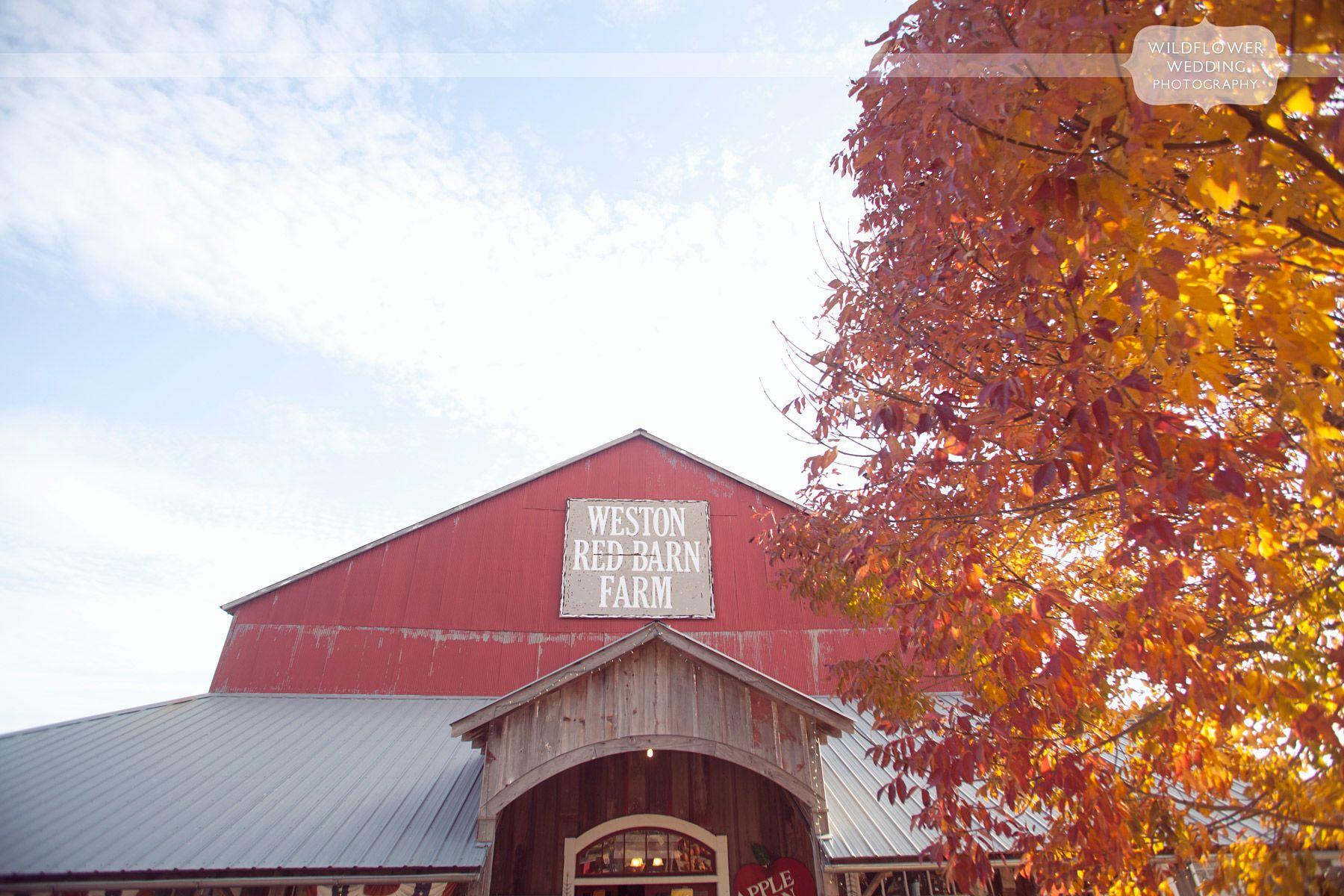 Autumn Wedding Weston Red Barn in Kansas City, MO