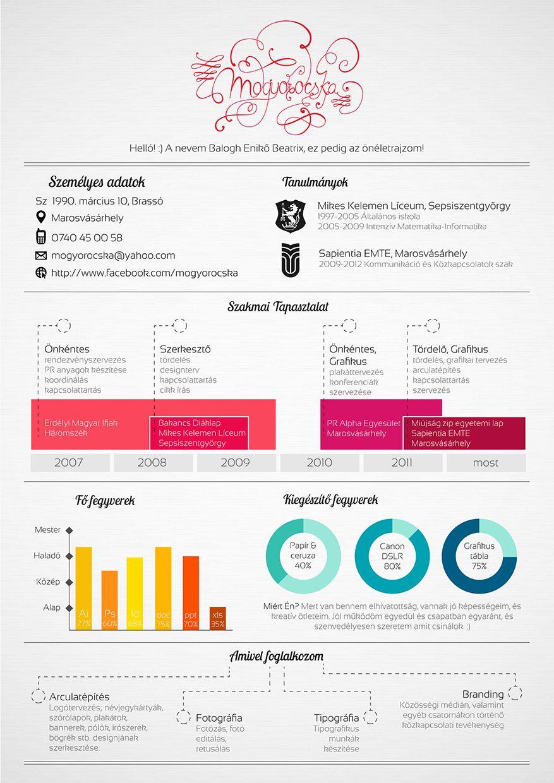 Infographic CV - resume | CV Inspiration | Pinterest | Infographic ...