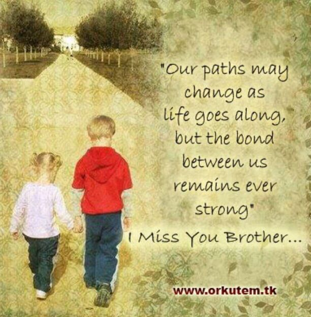 Missing My Brother Big Brother Quotes Brother Birthday Quotes My Brother Quotes