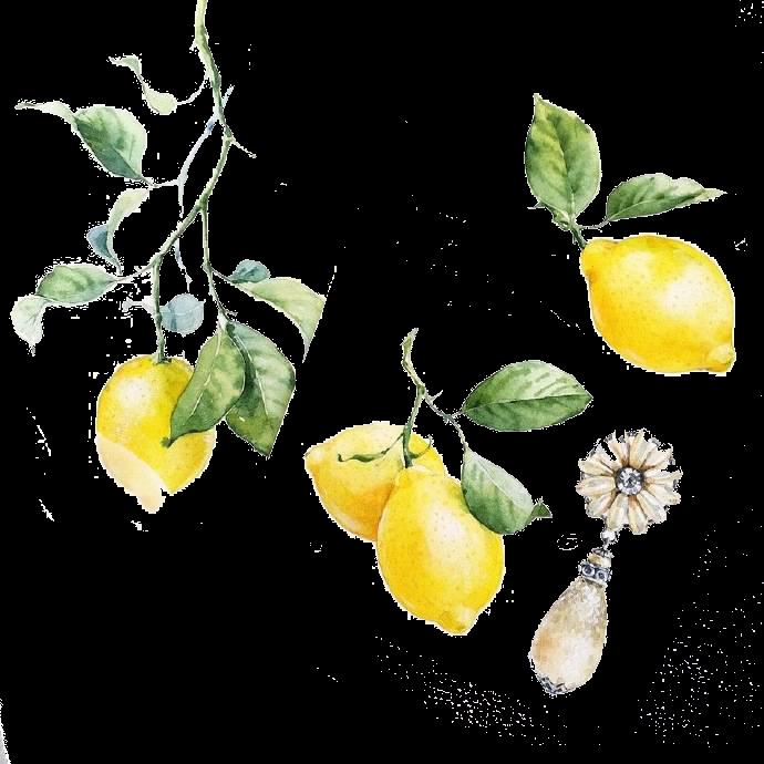 Lemon Yellow Lemon Transparent Png Image Lemon Clipart Wedding Illustration Botanical Watercolor Watercolor Food