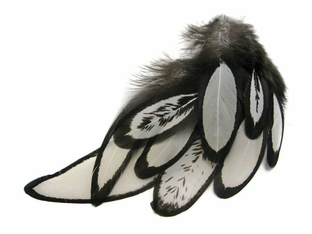 1 Dozen - NATURAL Laced Hen Loose Feather : 362