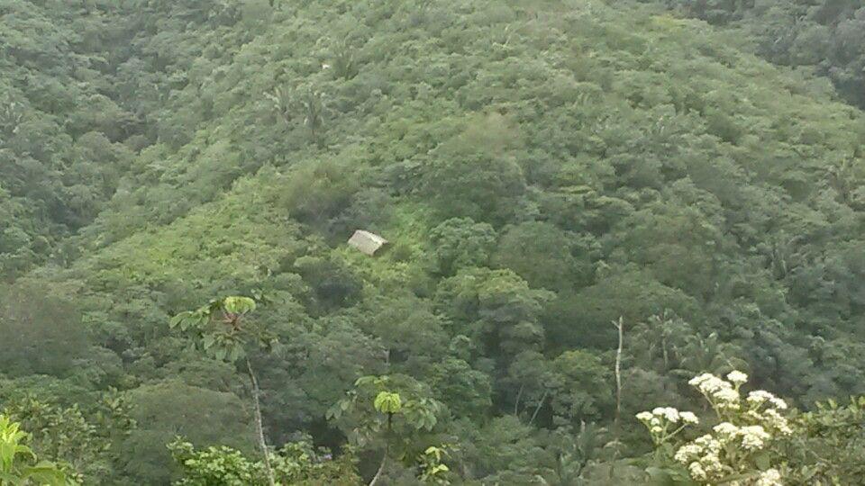 São Benedito em Ceará