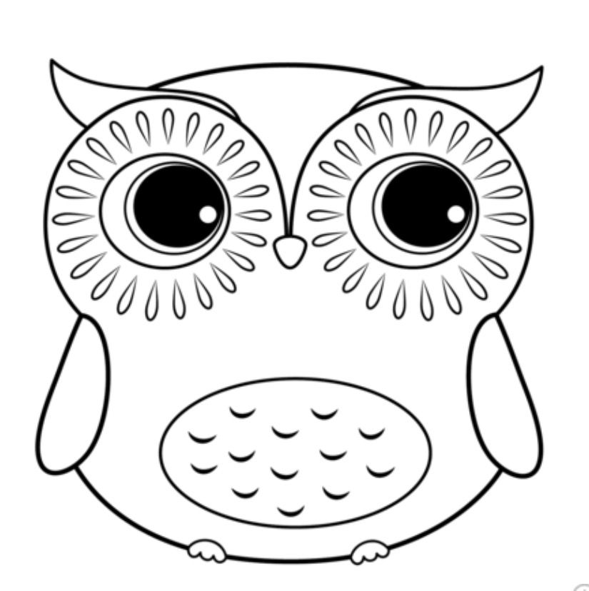 Idea By Ashley Wood On Adult Coloring Pages Owl Coloring Pages