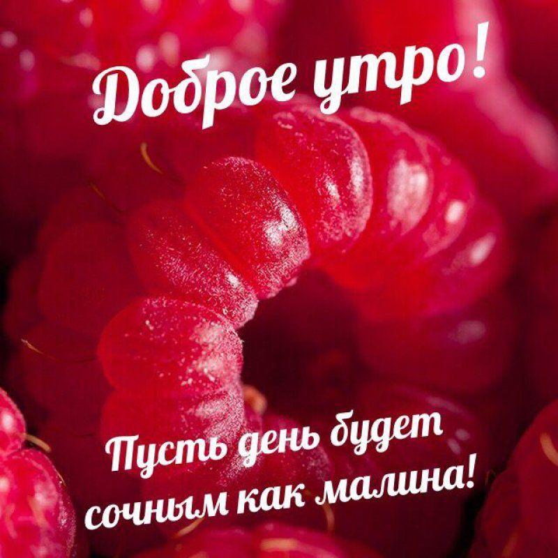 Romanticheskie Kartinki S Nadpisyu Dobroe Utro 38 Foto Dobroe