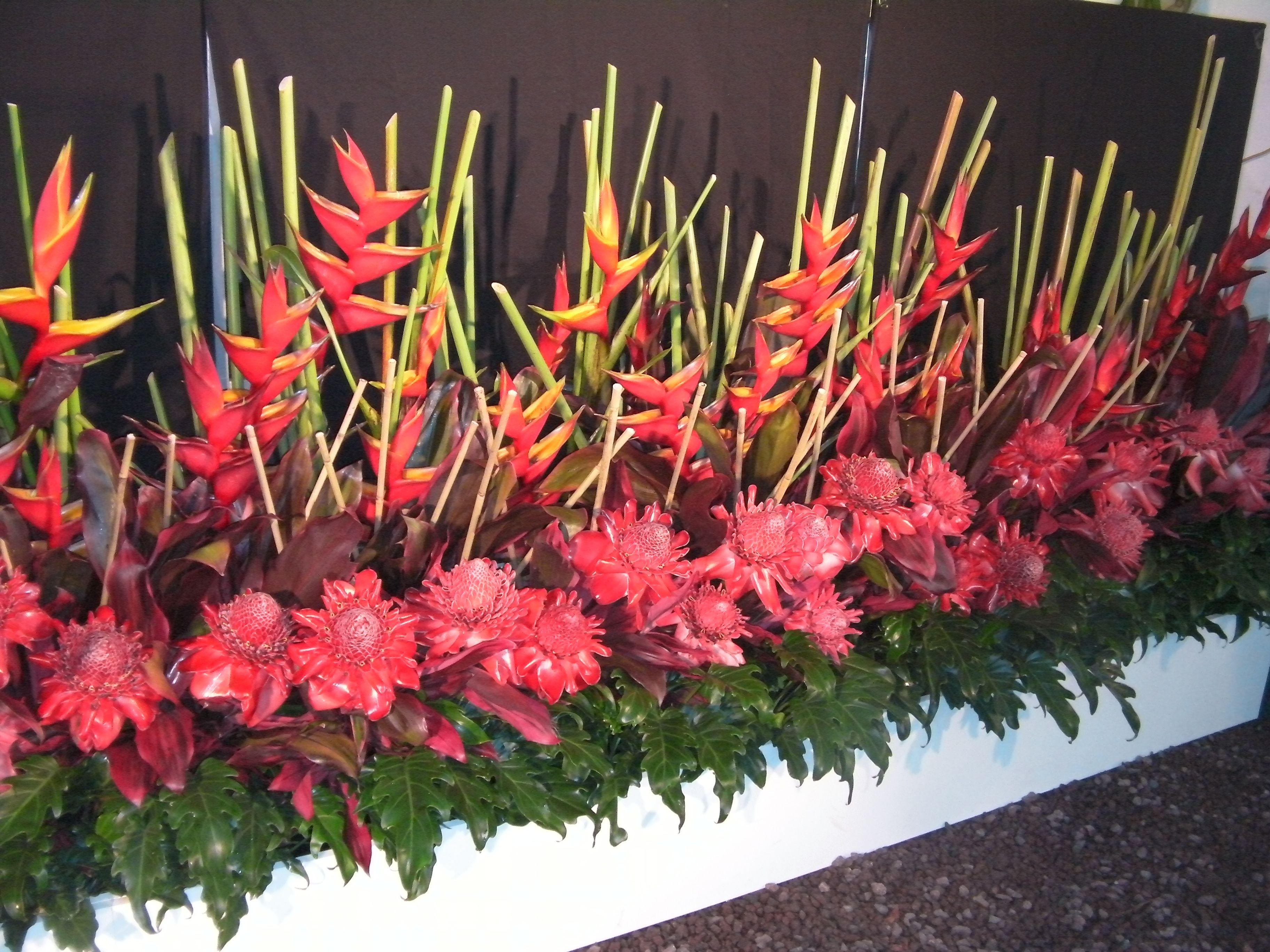 Yandina Ginger And Flower Festival Arranjos De Flores Flores Arranjos