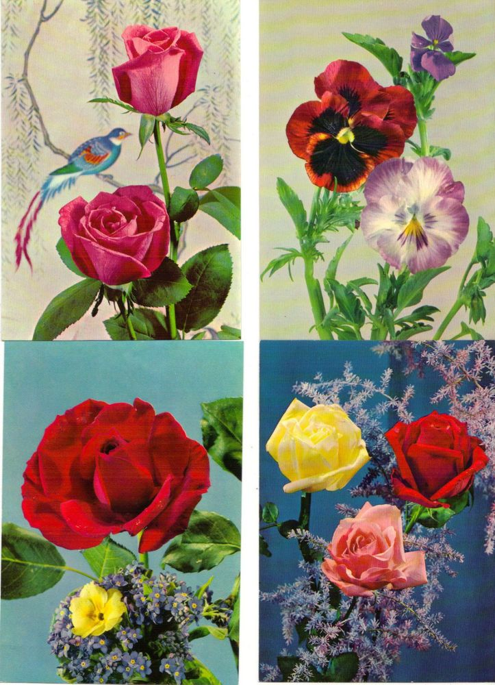 LOT 10 VINTAGE POSTCARDS NOS NEW OLD STOCK FLOWERS ROSES ++ 40$