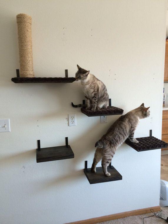 12 Quot Solid Cat Shelf Cat Shelves Cat Playground Cats