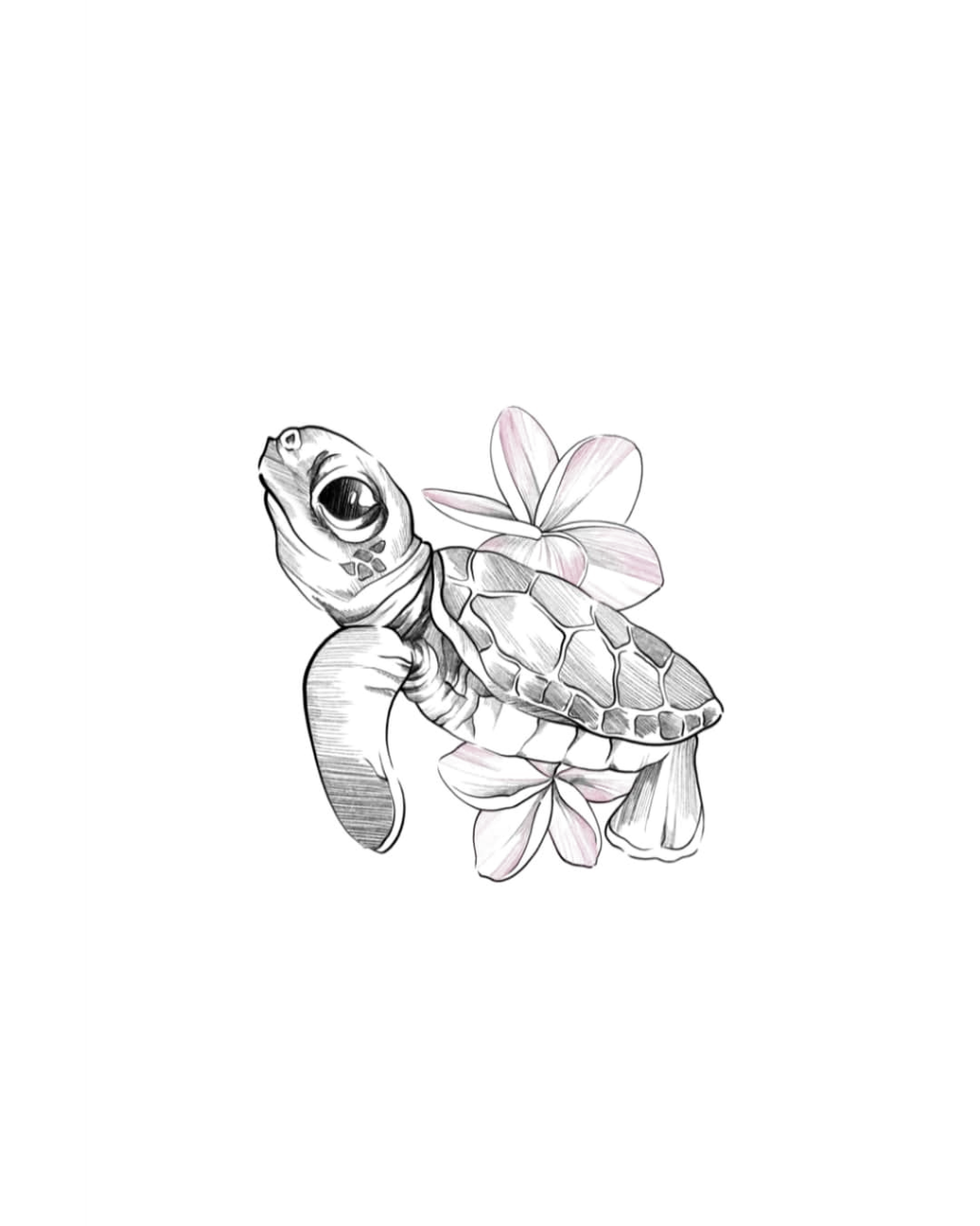 Turtle Eeek So Excited To Tattoo This Today Drawings Drawing Ideas Draw In 2020 Sketches Drawings Cute Turtle Tattoo