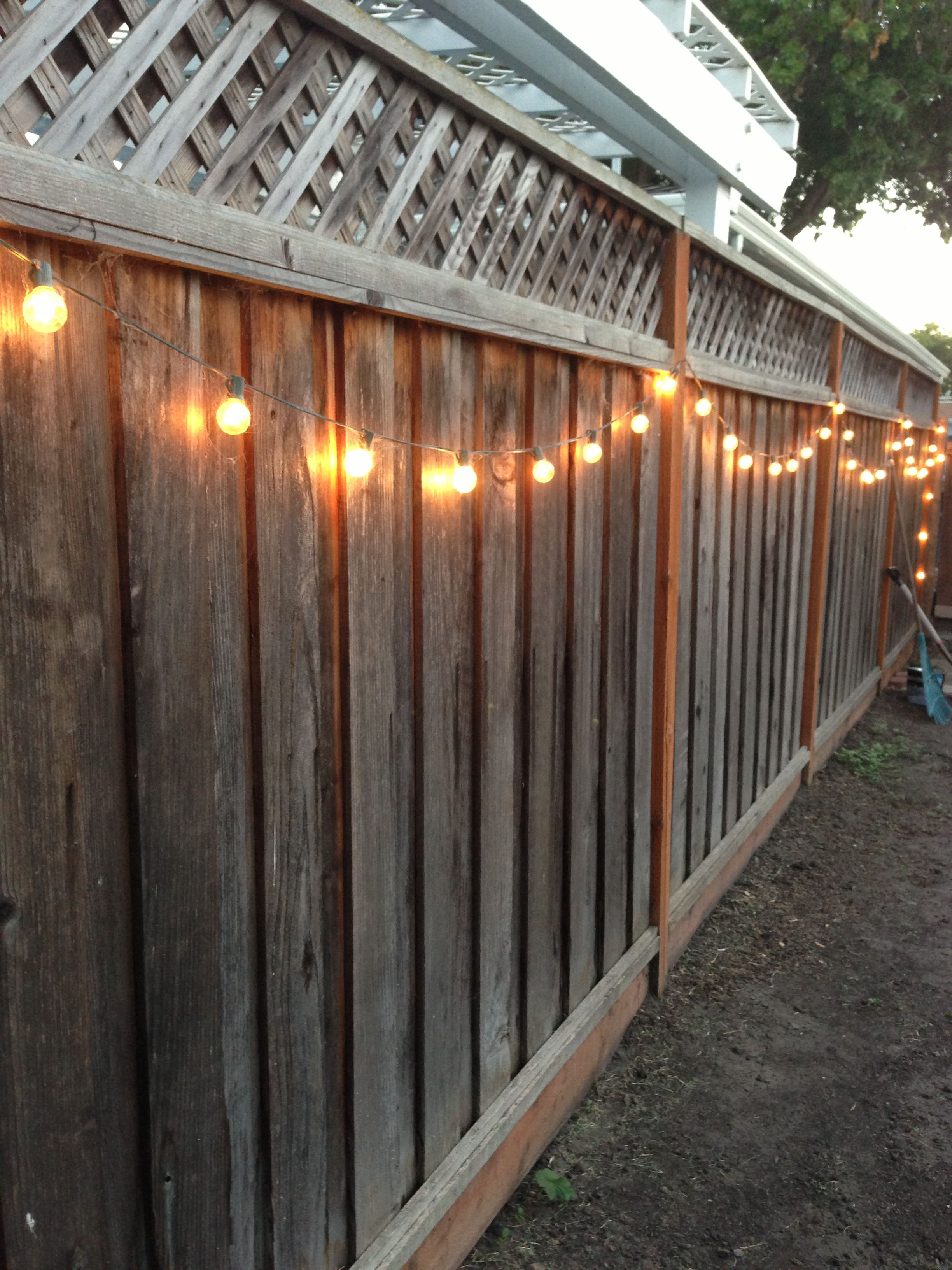 Diy Backyard Lighting Hang Lights On Your Fence Backyard Lighting Backyard Fences Outdoor Patio Lights