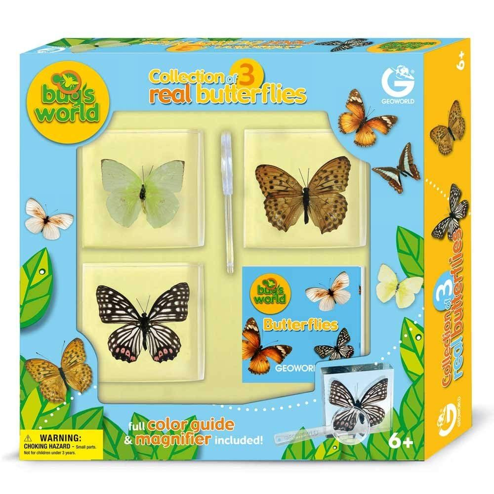 Collection of real butterflies in resin toys