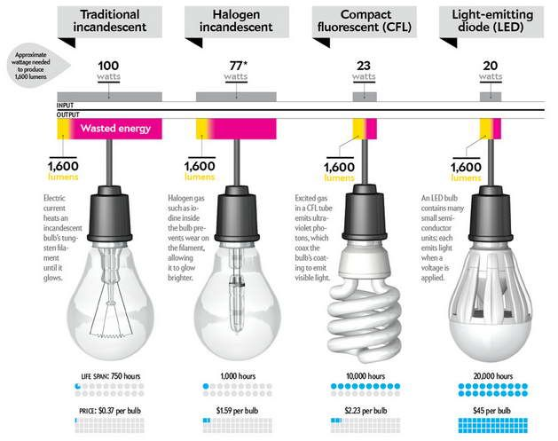 Comparison Of Led Bulb Cfl Bulb With Halogen And Traditional Incandescent Lighting Pinterest