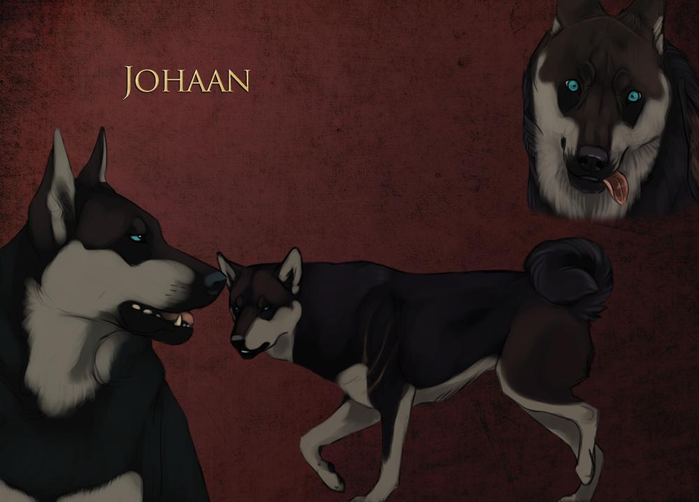Johaan by Kique7 Animal art, Anime wolf, Art