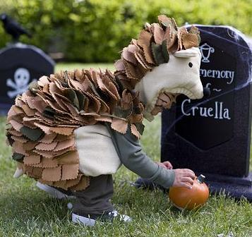 how to make a hedgehog costume for kids